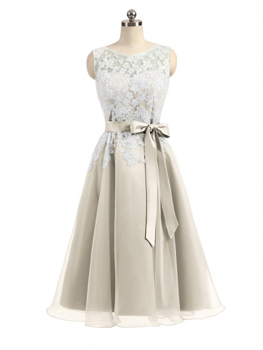 Babaroni Anastasia Organza with Ivory Lace Appliqued Short Dress